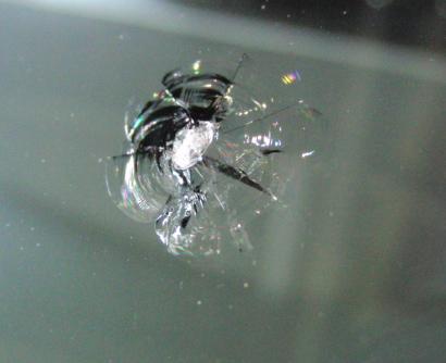 フロントガラスの飛び石